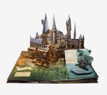 Harry Potter Pop Up Book: Filled with interesting facts about the development of the films that children and adults alike can enjoy, this popup book delivers on entertainment and educational value. Each popup features original artwork by Andrew Williamson who served as lead concept artist for all eight films.