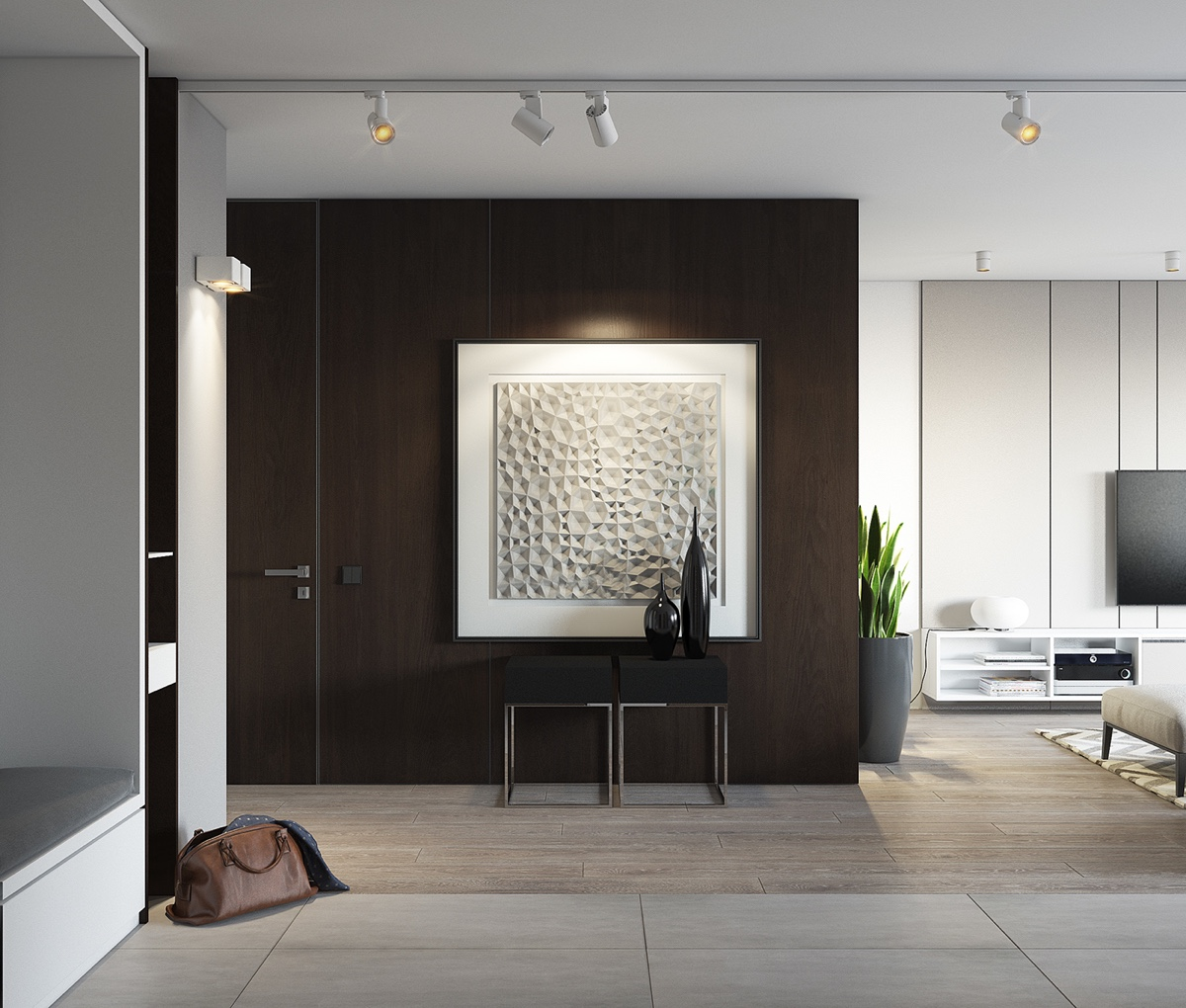 Feature Dark Wooden Wall Contemporary Apartment - Spacious looking one bedroom apartment with dark wood accents
