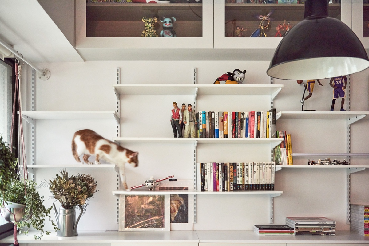 Accent Wall Bookshelf Adjustable - Cat owner s cramped apartment gets room to breathe