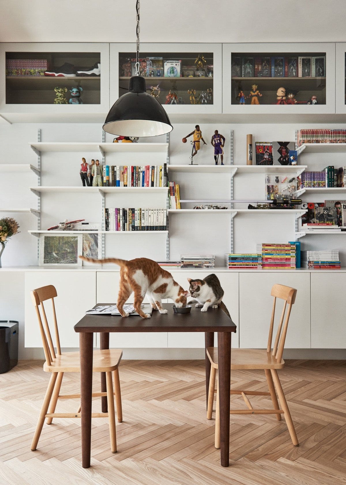 Pet Owner Apartment Dining Area - Cat owner s cramped apartment gets room to breathe