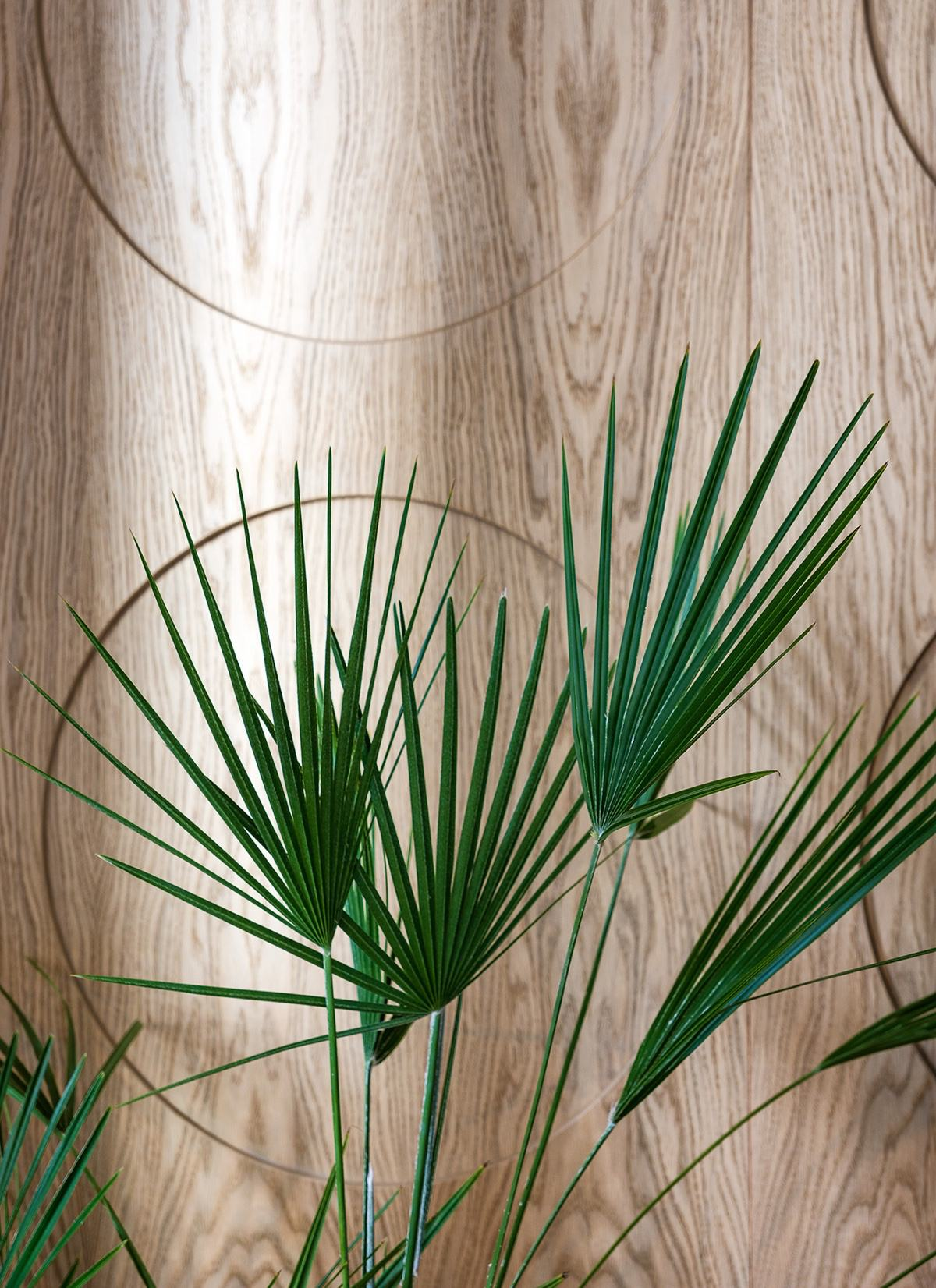 Office Space Foliage - Modern perfection in kyiv apartment