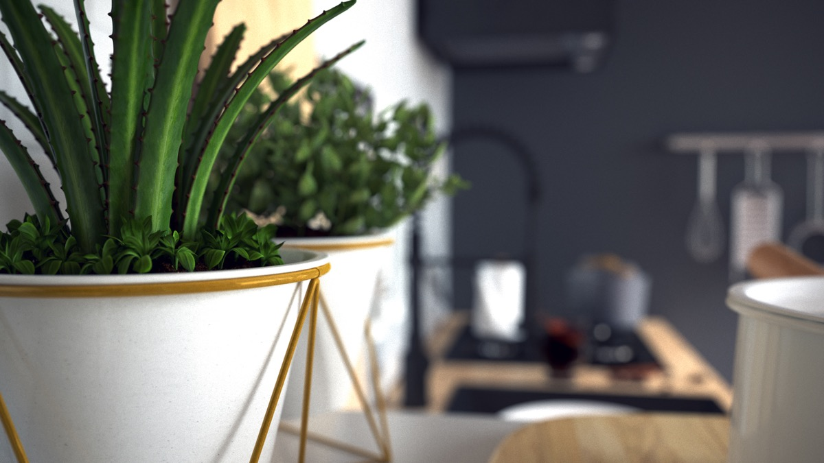 Modern Plant Stands - 3 fabulous apartment designs with lofted bedrooms