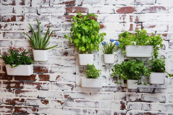 30 indoor herb pots and planters to add flavor to any home Indoor living wall herb garden