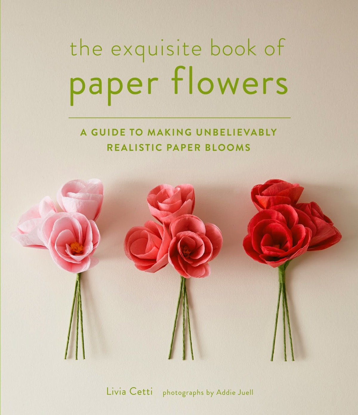 Cool product alert a book to help you make incredibly realistic cool product alert a book to help you make incredibly realistic paper flowers mightylinksfo