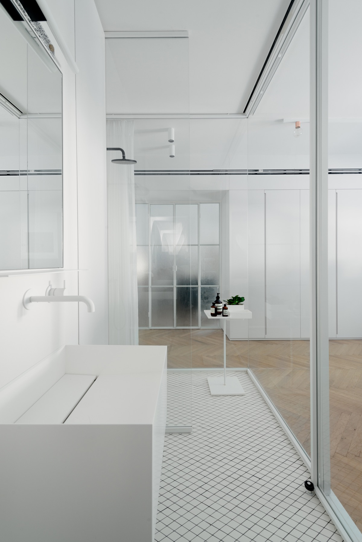 Bauhaus Style Home with Interior Glass Walls images 13