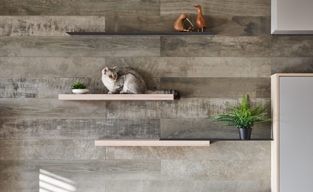 How To Make A Cat Happy Cat Friendly Home Design