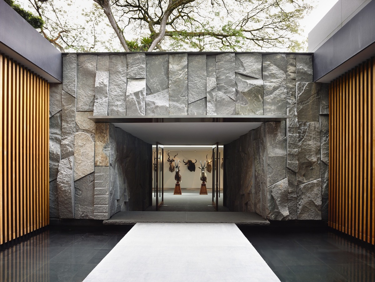 The Contemporary Home Of A Majestic Pre-War Rain Tree images 31