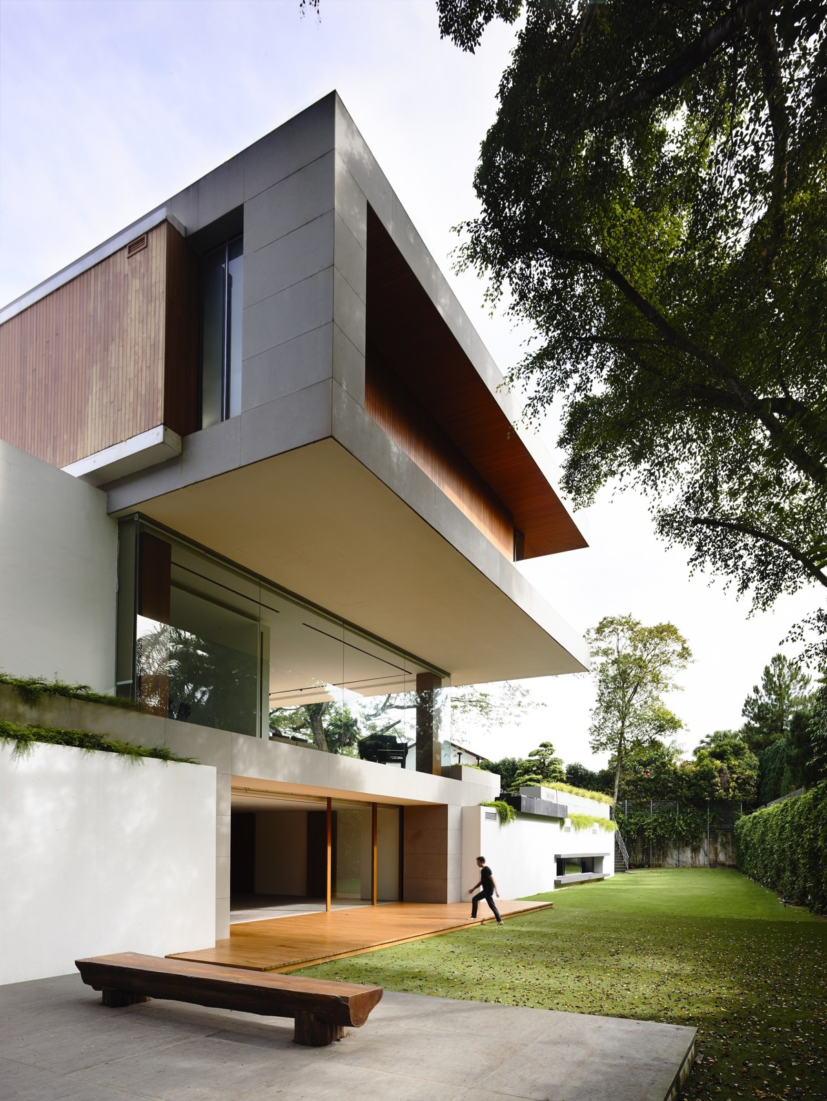 The Contemporary Home Of A Majestic Pre-War Rain Tree images 13