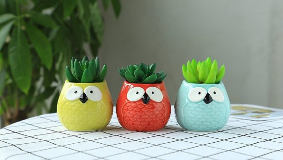 Product Of The Week: Ceramic Owl Succulent Planters