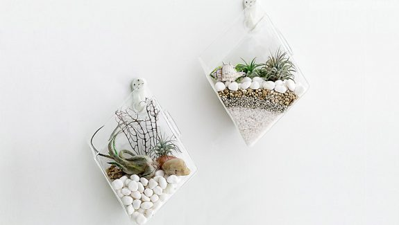 Product Of The Week: Wall Hanging Glass Planters