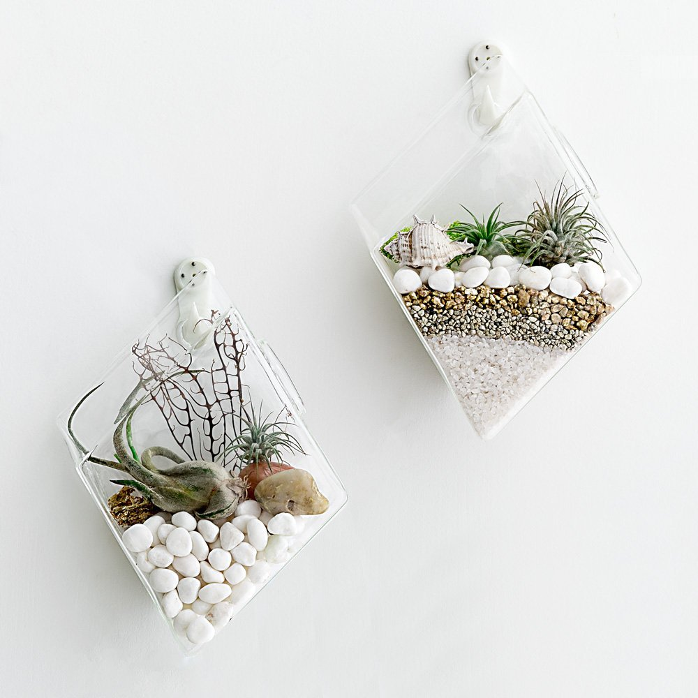 product   week wall hanging glass planters
