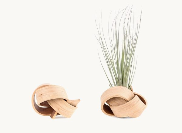 Product Of The Week: Beautiful Bent Wood Sculpture Planters