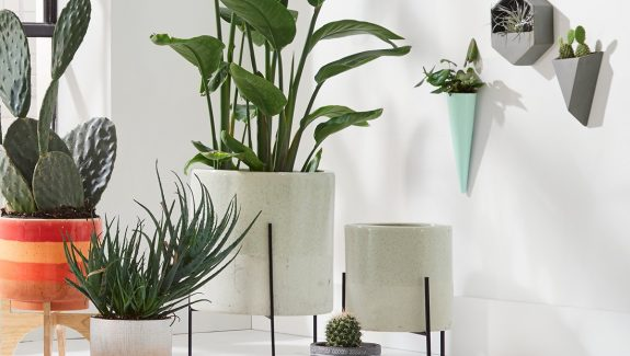 Product Of The Week: Beautiful Mid-Century Style Ceramic Planters With Stand