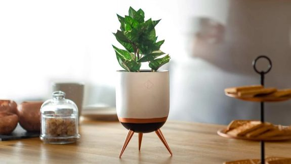 Product Of The Week: Gorgeous Plant Stands