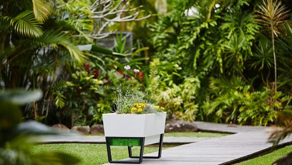 Product Of The Week: A Beautiful Self Watering Planter You Can Use Indoors And Outdoors