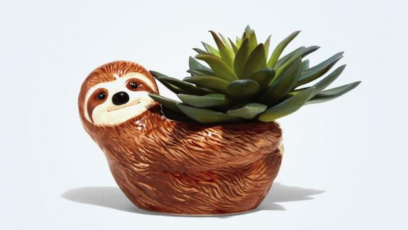 Product Of The Week: Cute Sloth Planters