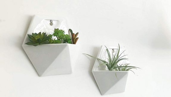 Product Of The Week: Beautiful Hexagonal Wall Planters