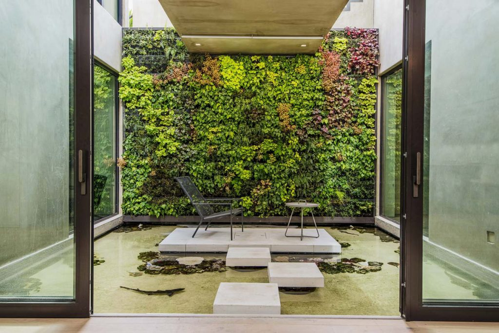 A House With A Vertical Garden And An Indoor Shark Pool