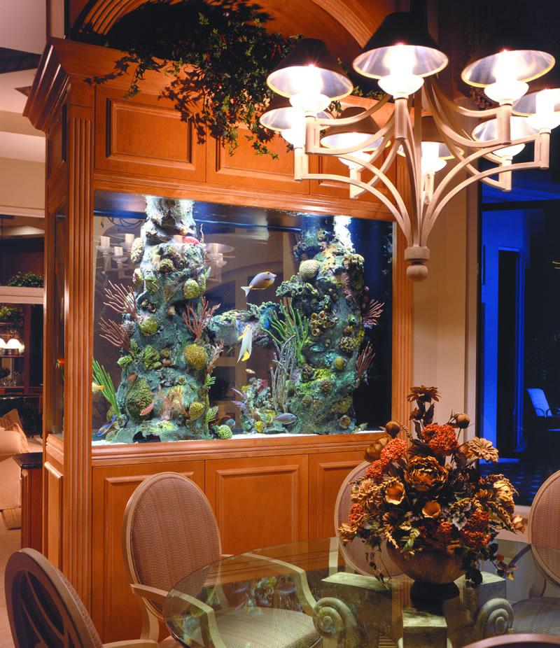 Home Aquarium Design Ideas: Aquariums, Different Types Of Aquariums