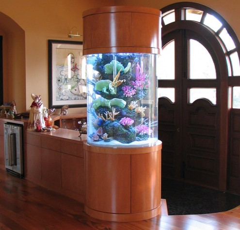 aquarium als Mittelpunkt