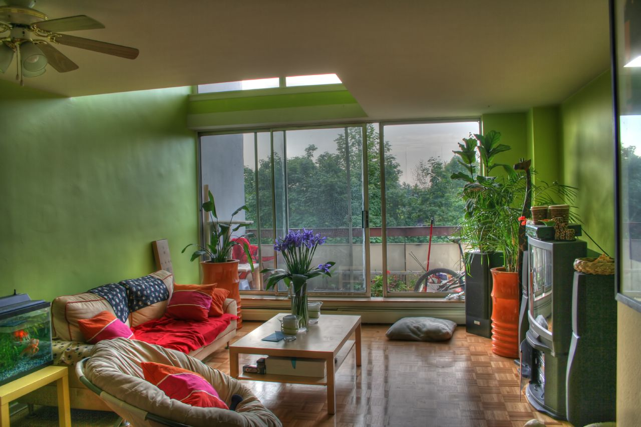 Plants inside rooms - Plant decoration in living room ...