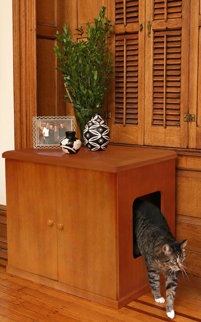 cat-box-4