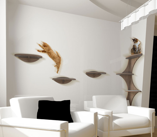Pet Friendly Home Decor: Spaces For Pets Inside Homes