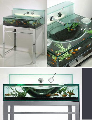 Becken aquarium