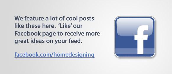 facebook-fan-Seite