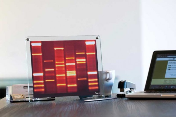 mini-DNA-office Schreibtisch
