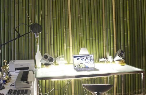 die Bambus-studio