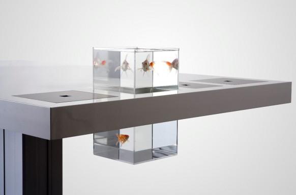 Milch Schreibtisch Goldfisch