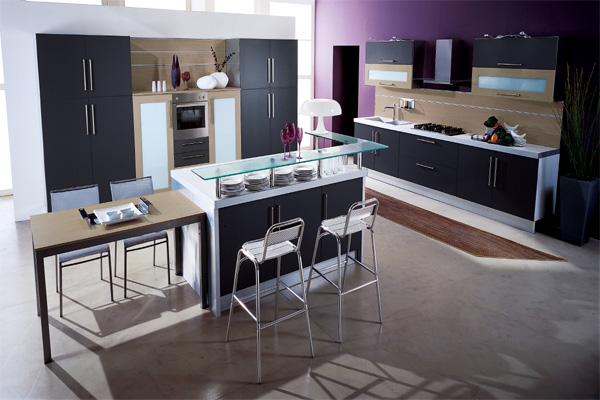 Purple Colored Kitchen