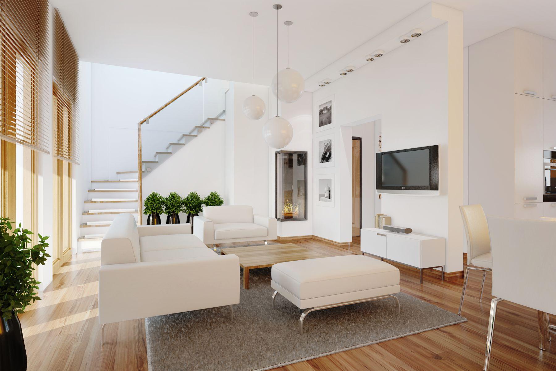 Contemporar Living Room Plants