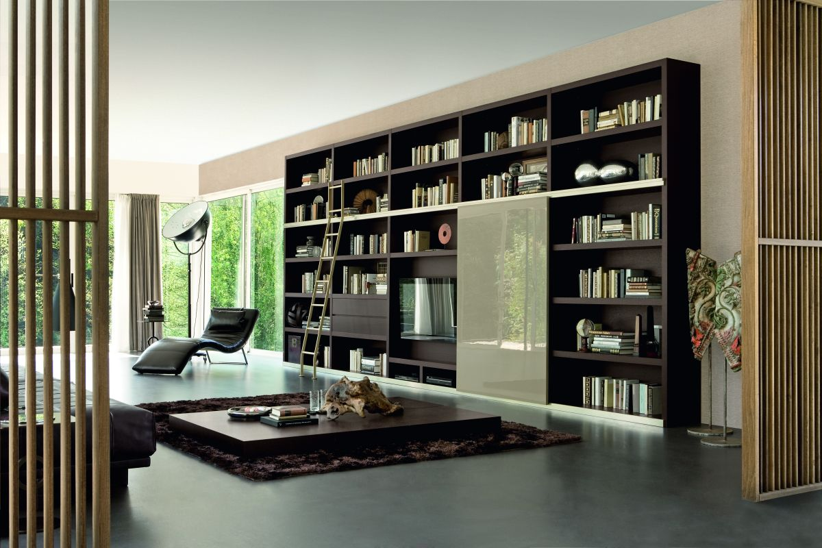Living Room With Bookshelf: Bookshelf Fantasy