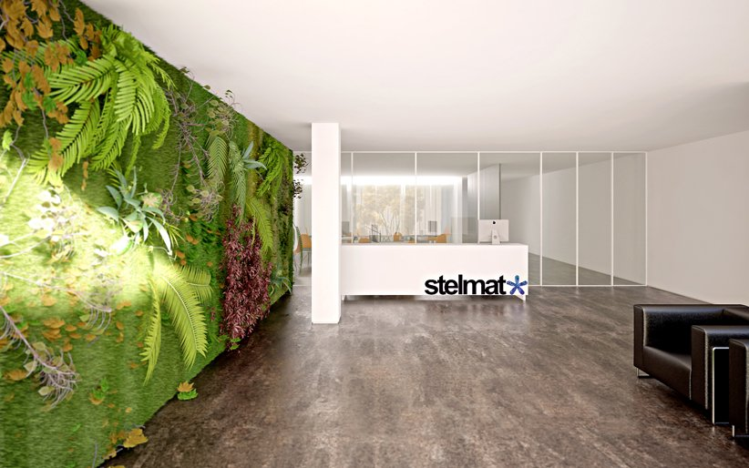 Beautiful Offices Of Stelmat Teleinformatica