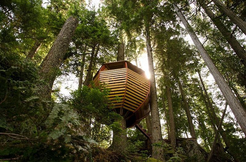 Hidden Egg Treehouse By Joel Allen
