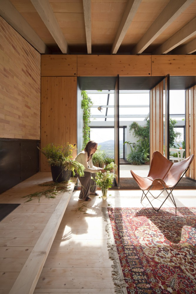 Oriental Rug Interior Design Ideas
