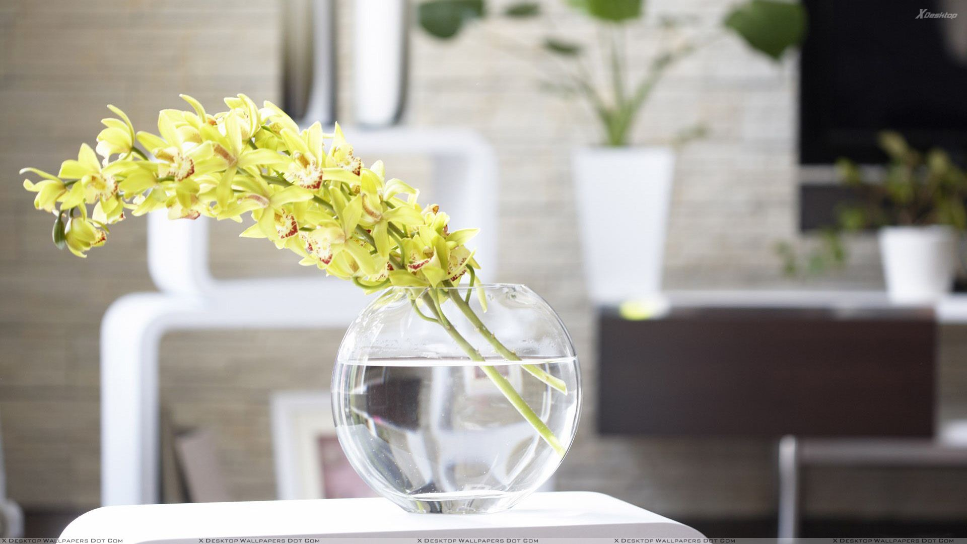 Oriental Floral Display Modern Living Interior Design Ideas