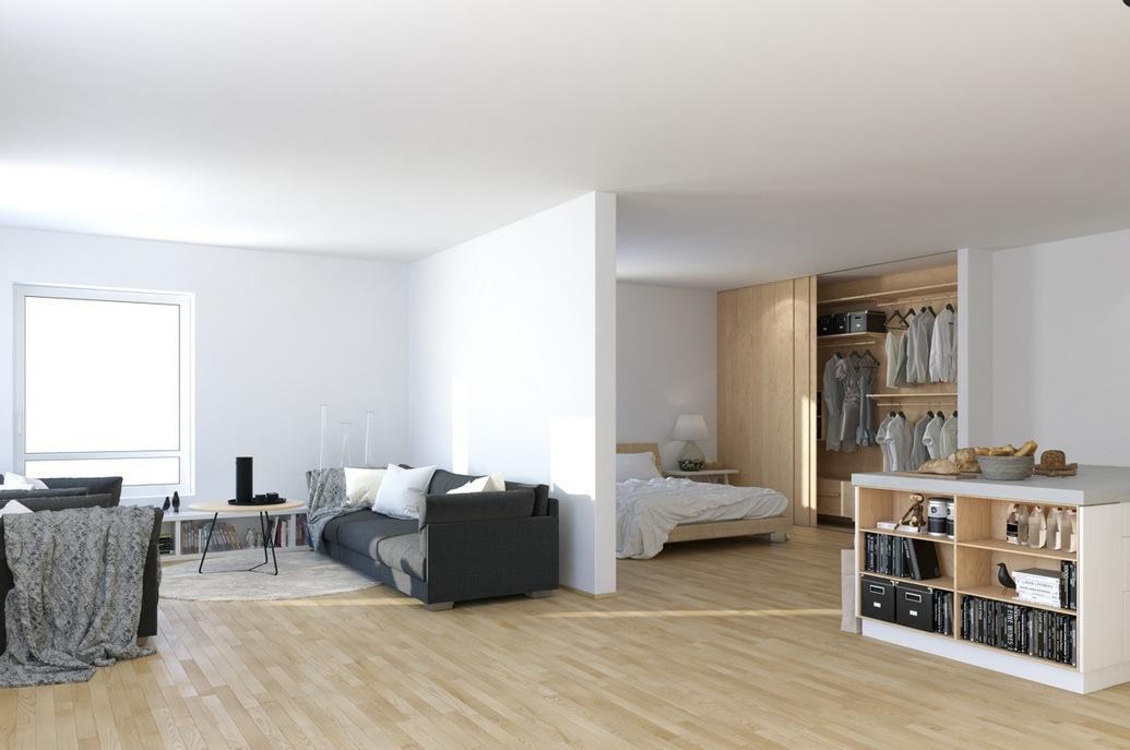 Scandinavian Studio Apartment – open plan partitioned ...
