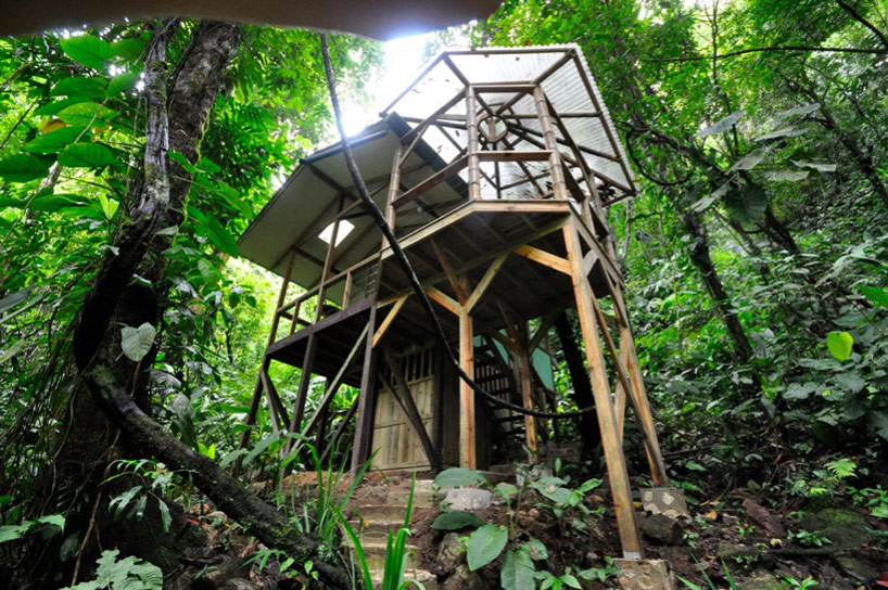 Sustainable treehouse community in costa rican jungle