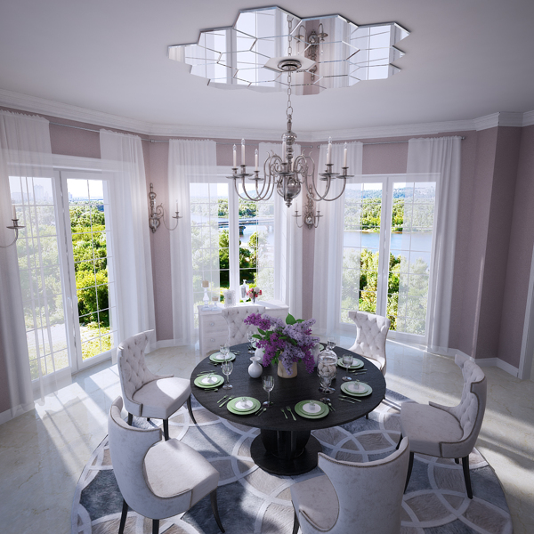 Mirrored Ceiling Rose Interior Design Ideas