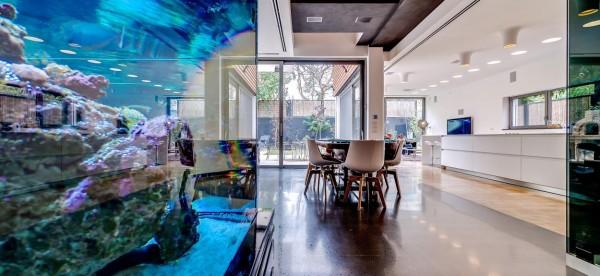 Big home aquarium recommend you