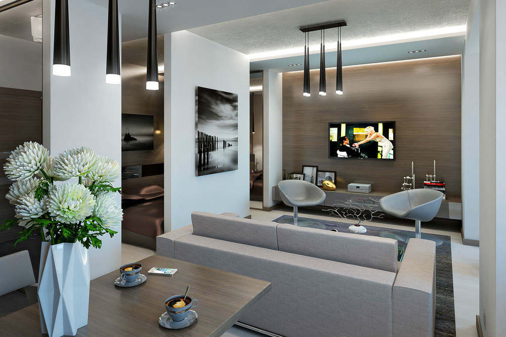 Apartment Design For Young Man Woman