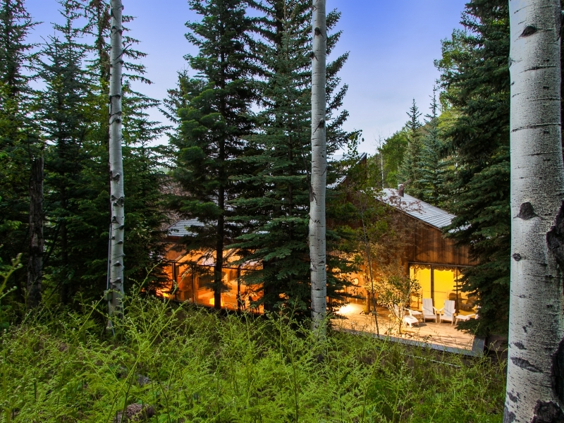 Gorgeous colorado cabin secluded among the trees