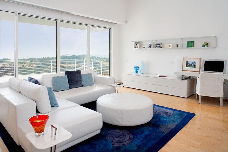 Royal Blue Area Rug Interior Design