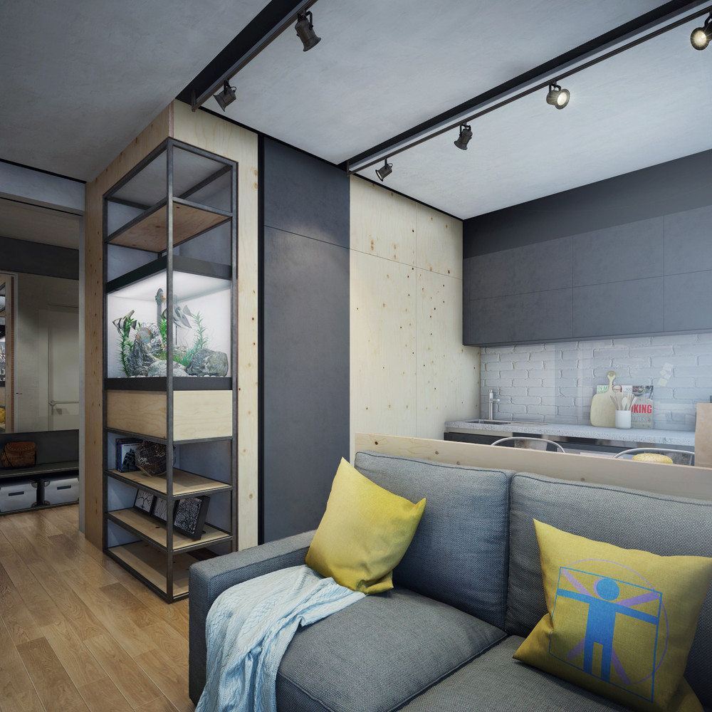 Need Apartment: Apartment Designs For A Small Family, Young Couple And A