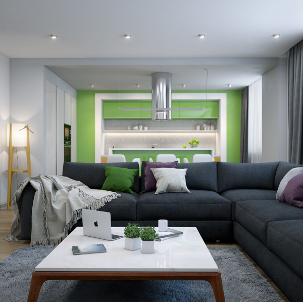 Lime green accents  add a non-so-subtle vibrance to this open floorplan home.