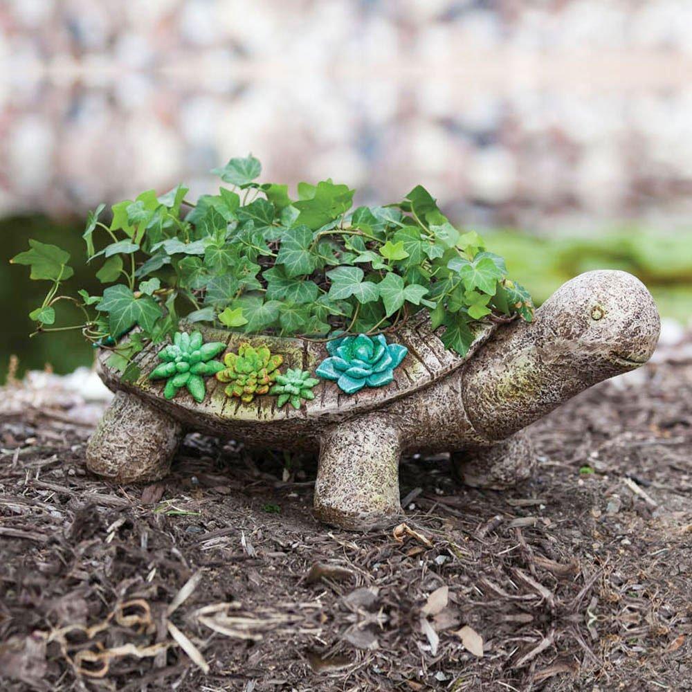Turtle Planter Interior Design Ideas