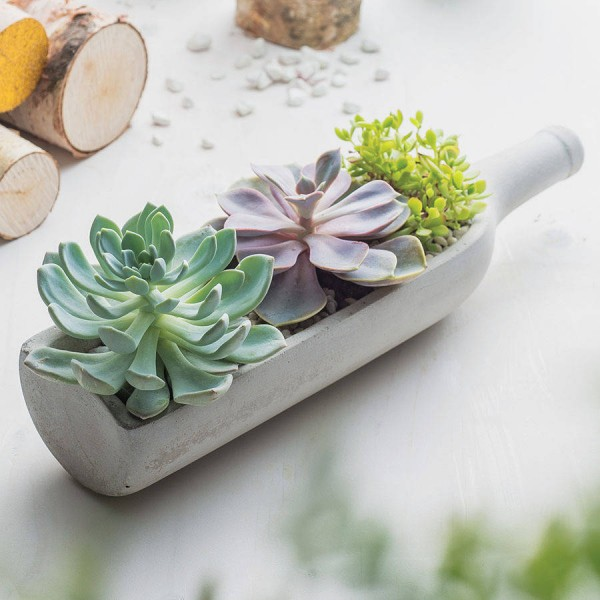 50 Unique Pots Amp Planters You Can Buy Right Now